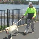 dog walking with darrin
